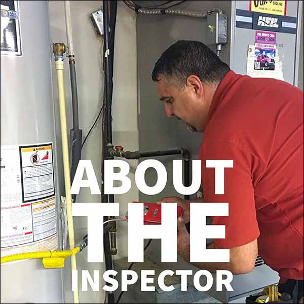 about the inspector matt merlino